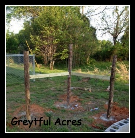 corner fence posts with braces-001