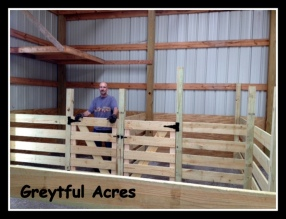 Dave in the goat stall