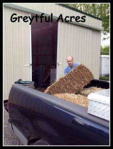dave unloading hay from the truck