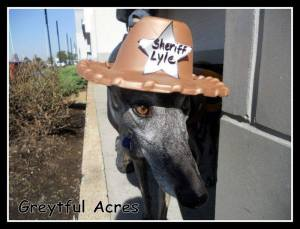 Sheriff Lyle