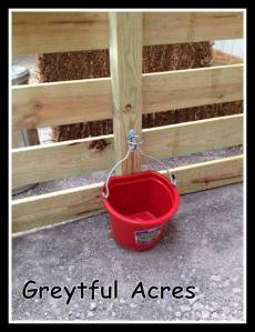 Water bucket hung in the goat pen