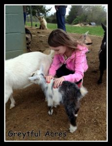 Lexi with goat-001