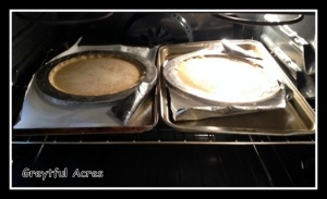 homemade pumpkin pie-004
